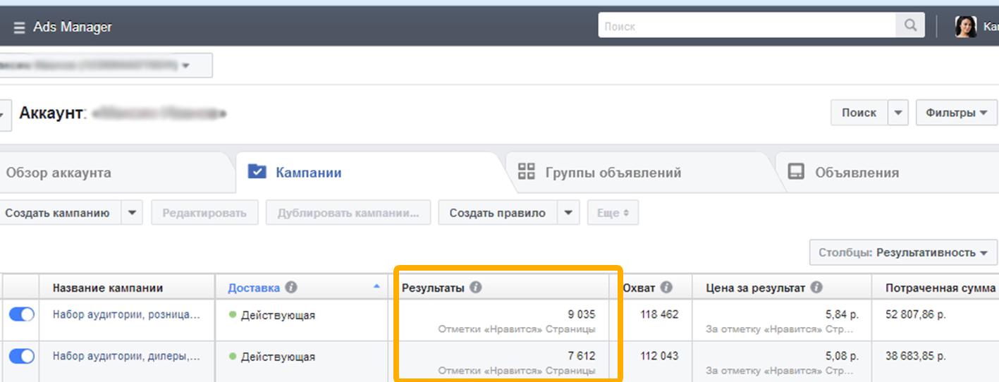 Визуальное изображение числа набранных подписчиков на страницу в Фейсбук, на полных отчетах, которые можно сформировать из менеджера рекламы.
