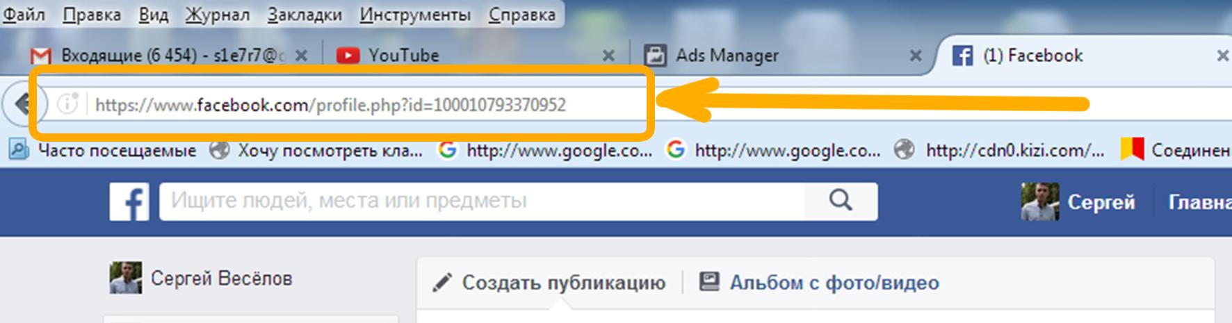 Ввод необходимых данных в адресную строку любого браузера